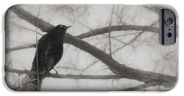 Nevermore IPhone 6 Case by Melinda Wolverson