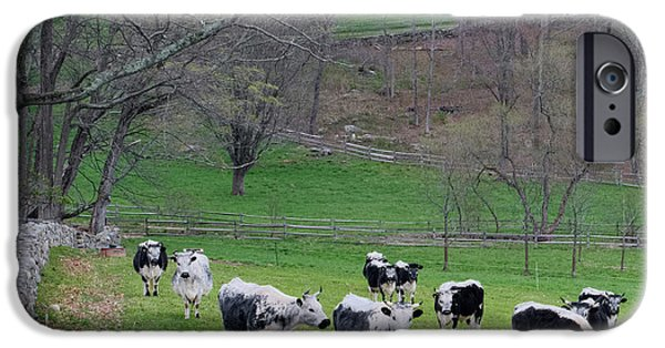 IPhone 6 Case featuring the photograph New England Spring Pasture Square by Bill Wakeley