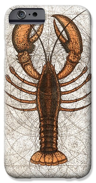 Cape Cod Mixed Media iPhone Cases - Northern Lobster iPhone Case by Charles Harden