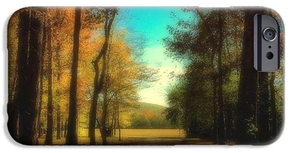 October Path IPhone 6 Case by Steven Gordon