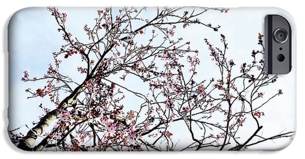 iPhone 6 Case - Overhead Branches by Julie Gebhardt