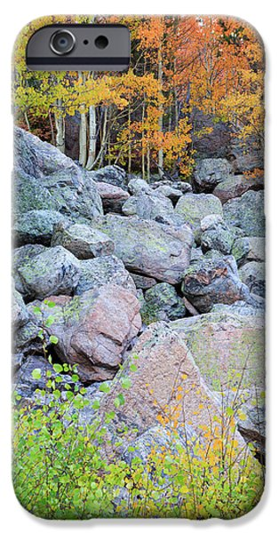 Painted Rocks IPhone 6 Case by David Chandler
