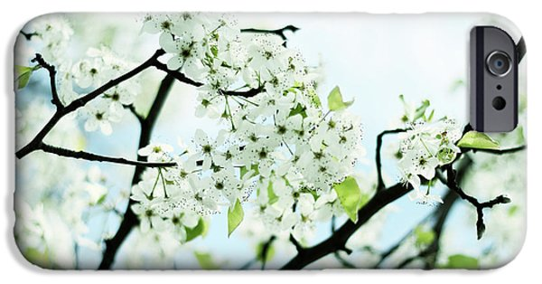 IPhone 6 Case featuring the photograph Pale Pear Blossom by Jessica Jenney
