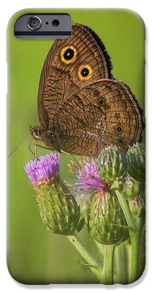 IPhone 6 Case featuring the photograph Pauper's Throne by Bill Pevlor