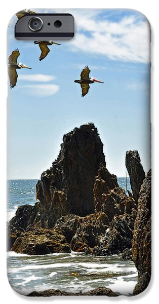 Sea Birds iPhone Cases - Pelican Inspiration iPhone Case by Gwyn Newcombe