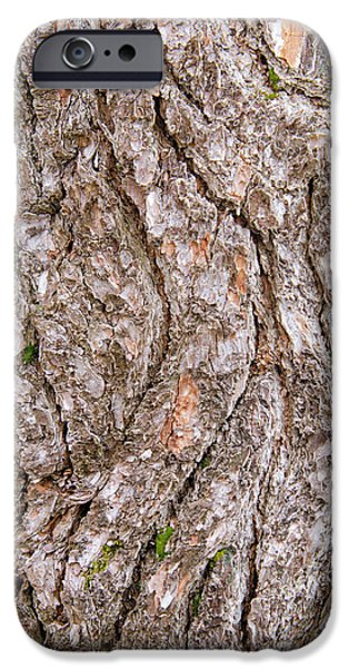 IPhone 6 Case featuring the photograph Pine Bark Abstract by Christina Rollo