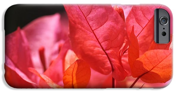 Orange iPhone 6 Case - Pink And Orange Bougainvillea by Rona Black