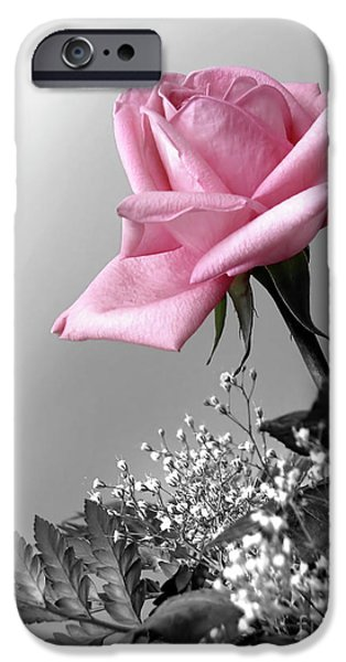 Close Up Floral iPhone Cases - Pink Petals iPhone Case by Carlos Caetano