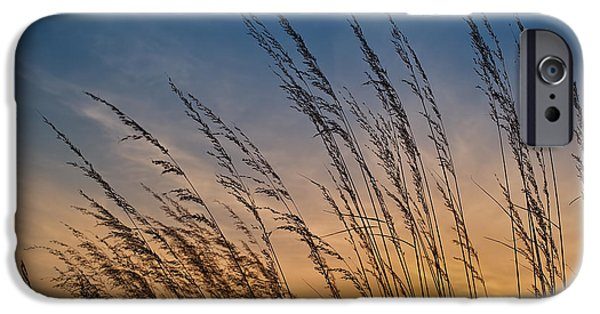 Prairie iPhone Cases - Prairie Grass Sunset iPhone Case by Steve Gadomski
