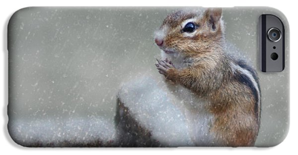 Chipmunk iPhone Cases - Praying for Spring iPhone Case by Lori Deiter