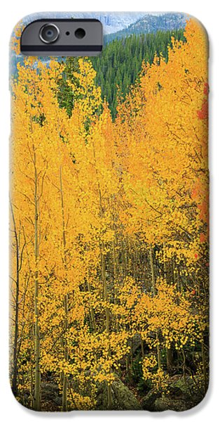 Pure Gold IPhone 6 Case by David Chandler