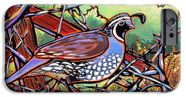 Nadi Spencer iPhone Cases - Quail iPhone Case by Nadi Spencer