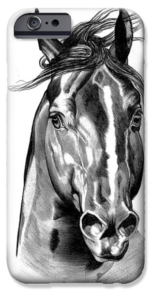 Drawing Of A Horse iPhone Cases - Quarter Horse Head Shot in Bic Pen iPhone Case by Cheryl Poland