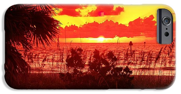 Palm Tree Greeting Cards iPhone Cases - Rays Break Thru iPhone Case by Florene Welebny