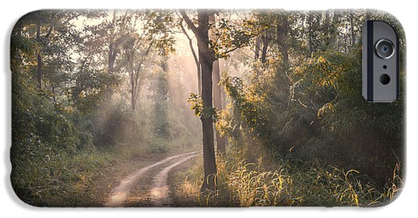 Rays Through Jungle IPhone 6 Case by Hitendra SINKAR