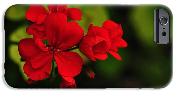 Red Geraniums iPhone Cases - Red Geranium iPhone Case by Kaye Menner
