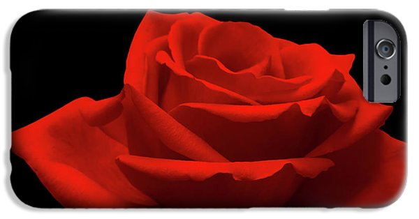 Red Rose iPhone 6 Case - Red Rose On Black by Wim Lanclus