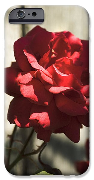 IPhone 6 Case featuring the photograph Red Rose by Yulia Kazansky
