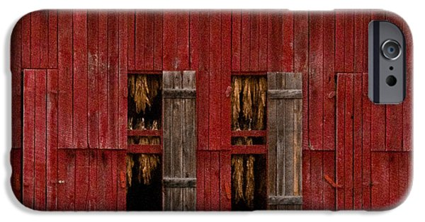 West Fork iPhone Cases - Red Tobacco Barn iPhone Case by Douglas Barnett