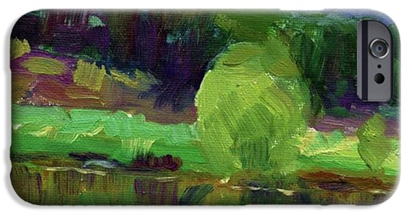 Reflections Painting Study By Svetlana IPhone 6 Case