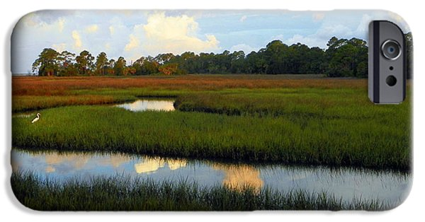 Cedar Key iPhone Cases - Reflective Presentation iPhone Case by Sheri McLeroy