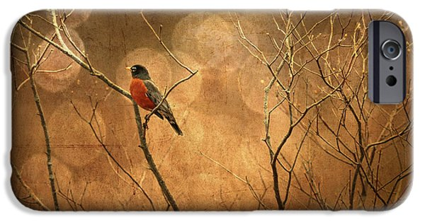 Lois Bryan Digital iPhone Cases - Robin iPhone Case by Lois Bryan