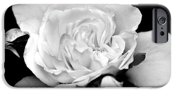 IPhone 6 Case featuring the photograph Rose Black And White by Christina Rollo