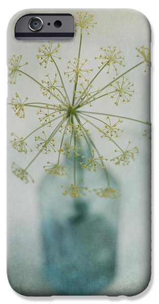 Flower Still Life iPhone Cases - Round Dance iPhone Case by Priska Wettstein