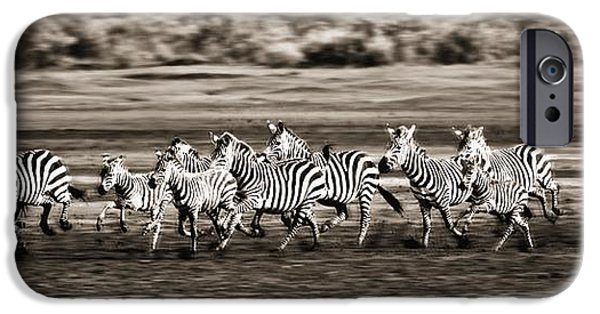 Adrenaline iPhone Cases - Running Zebras, Serengeti National iPhone Case by Carson Ganci