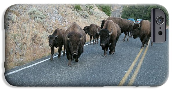 Bison Photographs iPhone Cases - Rush Hour iPhone Case by Michael Peychich