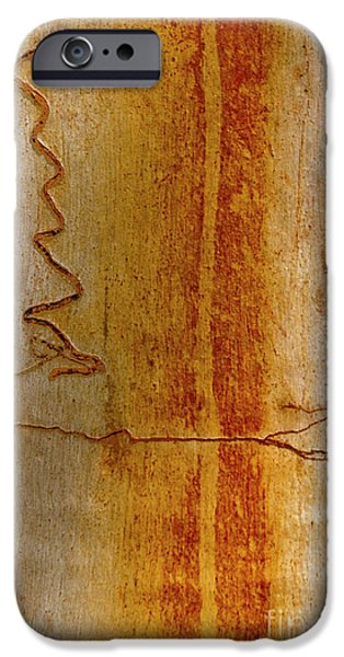 IPhone 6 Case featuring the photograph Scribbly Gum Bark by Werner Padarin