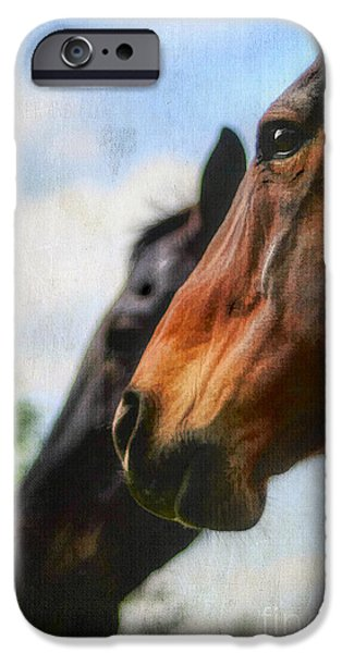 The Horse iPhone Cases - Side by Side iPhone Case by Darren Fisher