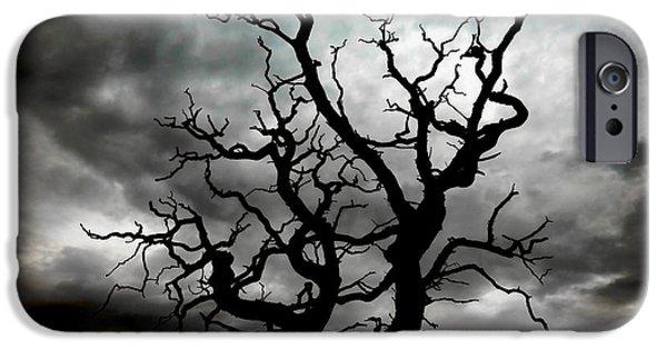 Threatening iPhone Cases - Skeletal Tree iPhone Case by Meirion Matthias