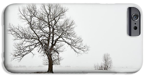 Snowy Day iPhone Cases - Snowy Winter Landscape With Tree iPhone Case by Michal Boubin