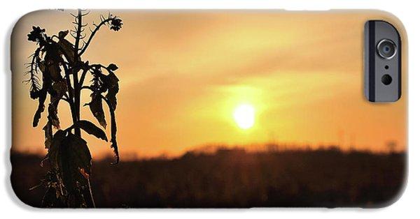 iPhone 6 Case - Sonnenuntergang by Scimitarable