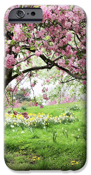 IPhone 6 Case featuring the photograph Spring Fever by Jessica Jenney