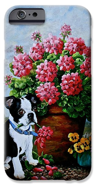 Puppies iPhone Cases - SRB Jonas iPhone Case by Susan Herber