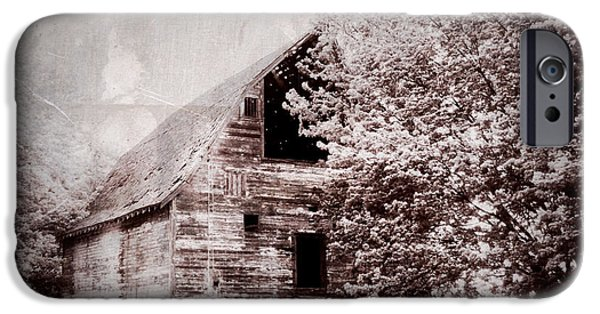 Shed iPhone Cases - Still Here iPhone Case by Julie Hamilton