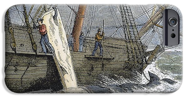 1874 iPhone Cases - Stripping Whale Blubber iPhone Case by Granger