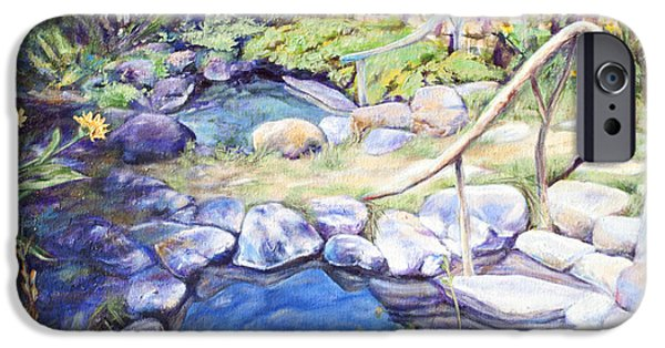 Fed Paintings iPhone Cases - Sublime pools  iPhone Case by M Schaefer