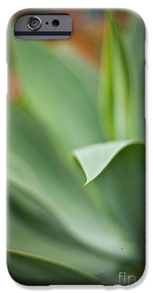 Big Island iPhone Cases - Succulent Curves iPhone Case by Mike Reid