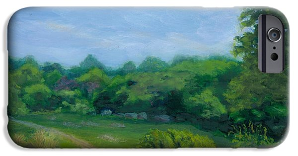 Stonewall Paintings iPhone Cases - Summer Afternoon at Ashlawn Farm iPhone Case by Paula Emery