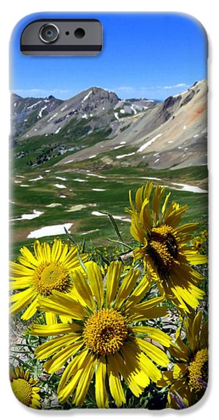 Summer Tundra IPhone 6 Case