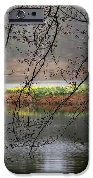IPhone 6 Case featuring the photograph Sun Shower by Bill Wakeley