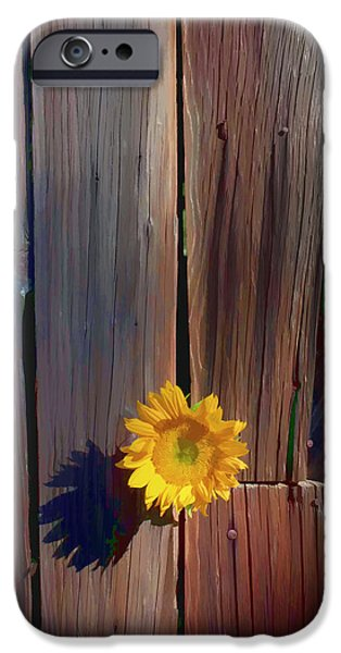 Sunflower Seeds iPhone 6 Case - Sunflower In Barn Wood by Garry Gay