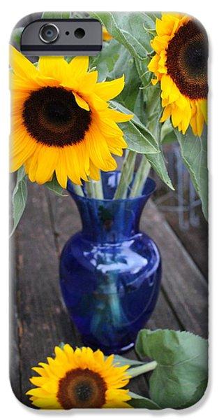 Sunflower Seeds iPhone 6 Case - Sunflowers And Blue Vase - Still Life by Dora Sofia Caputo Photographic Design and Fine Art