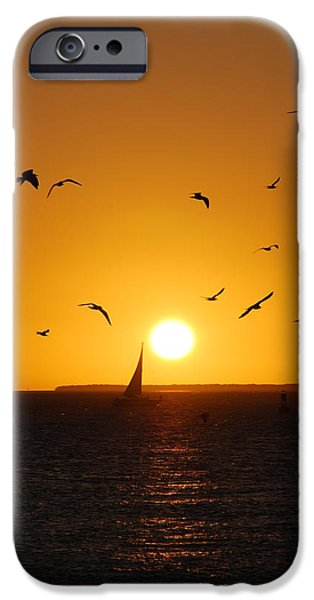 Reflections Of Sun In Water iPhone Cases - Sunset Birds Key West iPhone Case by Susanne Van Hulst