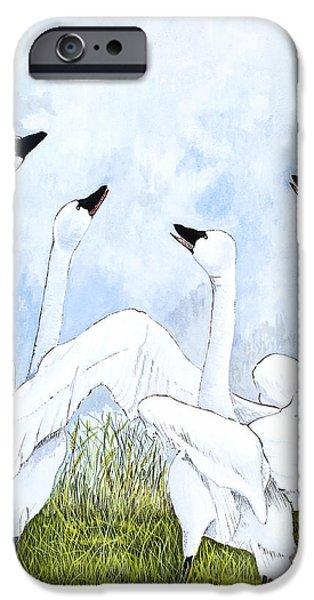 Swans... iPhone Cases - Swan Dance iPhone Case by Virginia McLaren