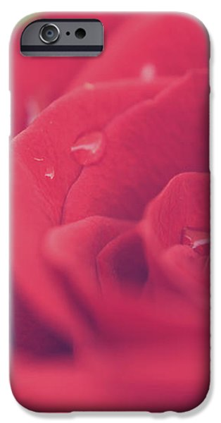 Tears of Love iPhone Case by Laurie Search