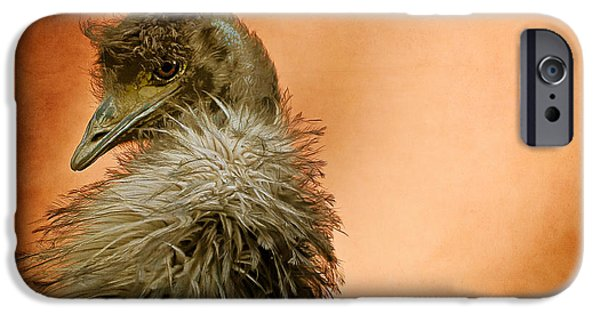 Emu iPhone Cases - That Shy Come-Hither Stare iPhone Case by Lois Bryan